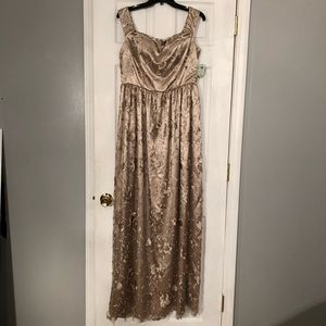 Windsor taupe lace formal prom long dress 13 NWT